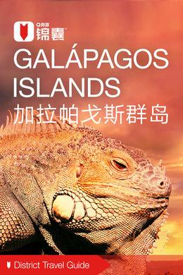 加拉帕戈斯群岛穷游锦囊