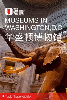 华盛顿博物馆穷游锦囊
