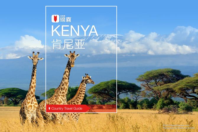 肯尼亚穷游锦囊封面