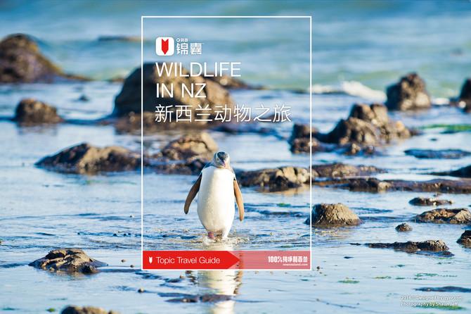 新西兰动物之旅穷游锦囊封面